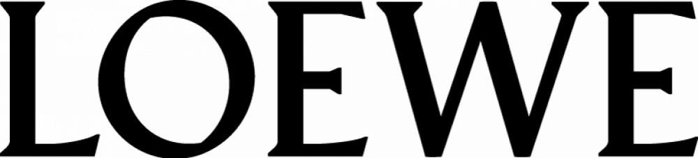 Loewe Retrofit DVB-S Twin L2650