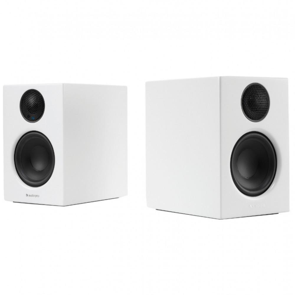 kan du ansluta två högtalare till en utgång