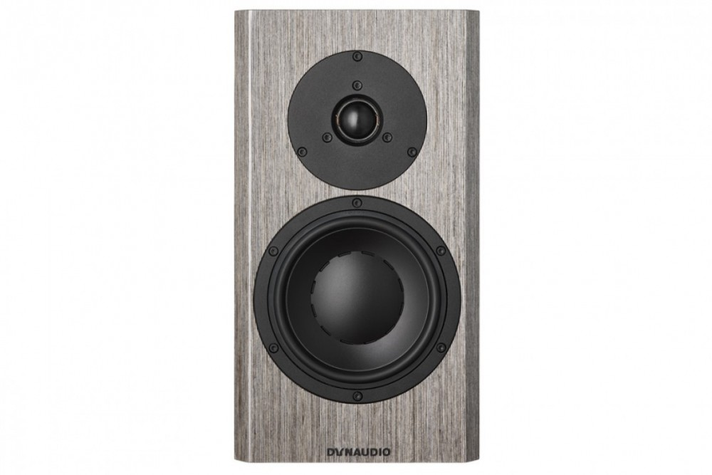 Dynaudio Special Forty Grey Birch HG